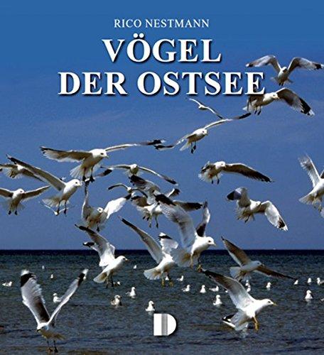 Bildband Vögel der Ostsee
